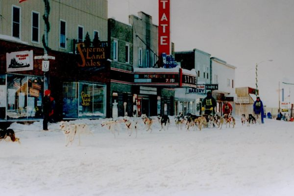 Dogsled races